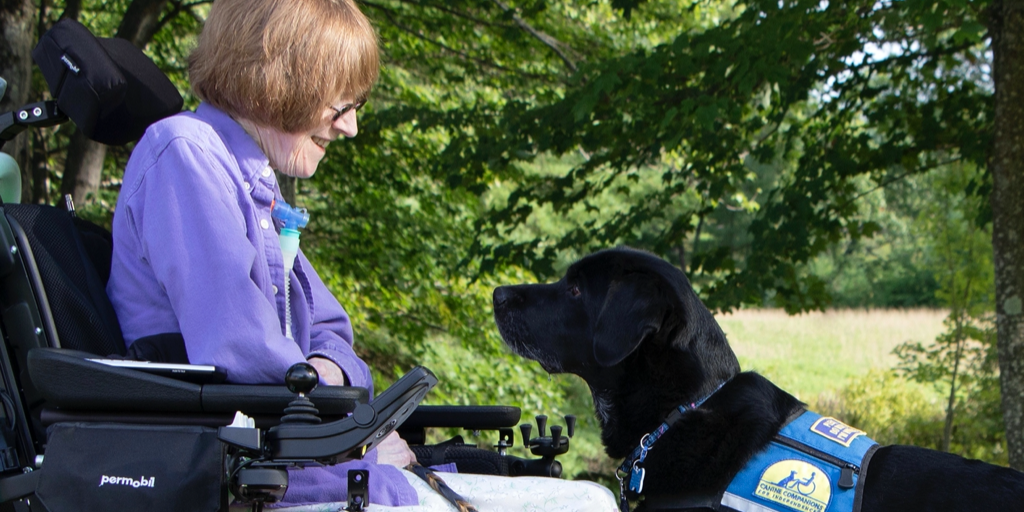 Reflections on our Service Dog partnership!