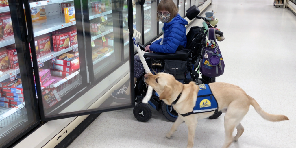 A service dog helps at the grocery store!