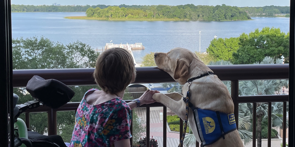 A service dog goes on vacation!