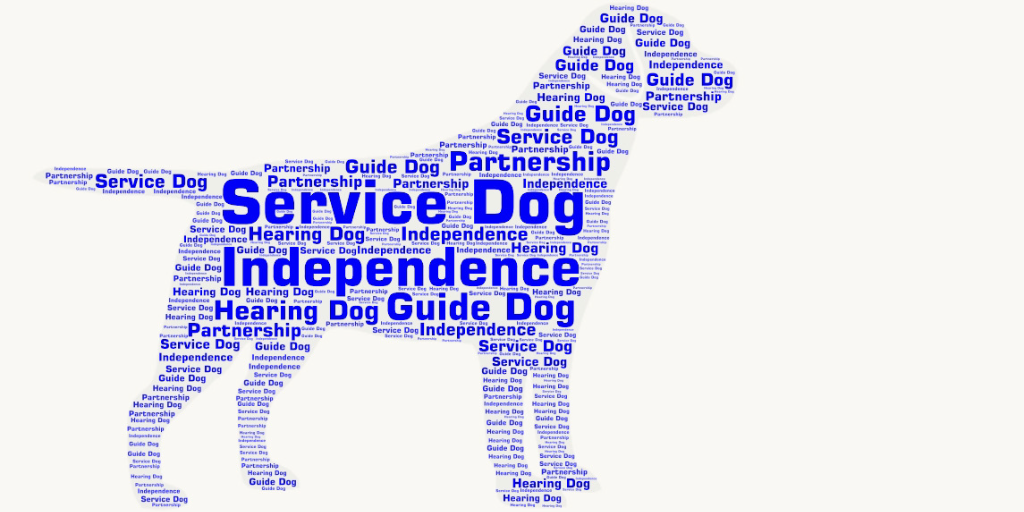 Different types of assistance dogs!