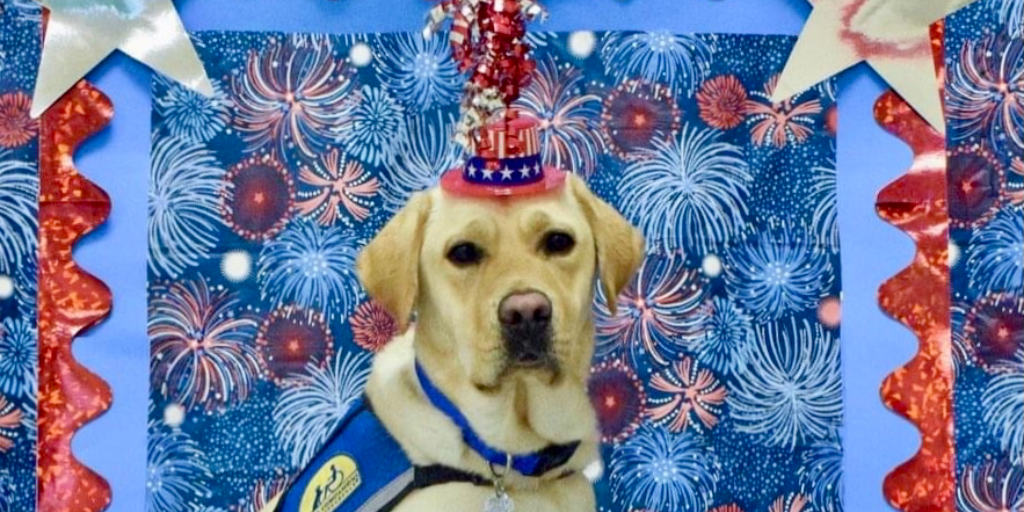 A service dog gives independence every day!